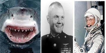 Shark Tales:  JFK, Mercury 7 astronauts and shark repellents